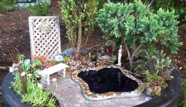 Мини-сад в горшке и варианты его создания