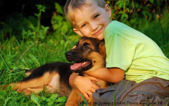 Как выбрать домашнее животное для ребенка.